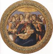 Sandro Botticelli Madonna and Child with six Angels or Madonna of the Pomegranate (mk36) oil painting picture wholesale