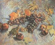 Vincent Van Gogh Still life with Grapes,Apples,Pear and Lemons (nn040 oil painting picture wholesale