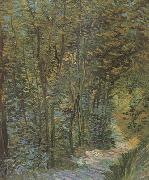 Vincent Van Gogh Path in the Woods (nn04) oil painting picture wholesale