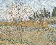Vincent Van Gogh Orchard with Peach Trees in Blossom (nn04) oil painting picture wholesale