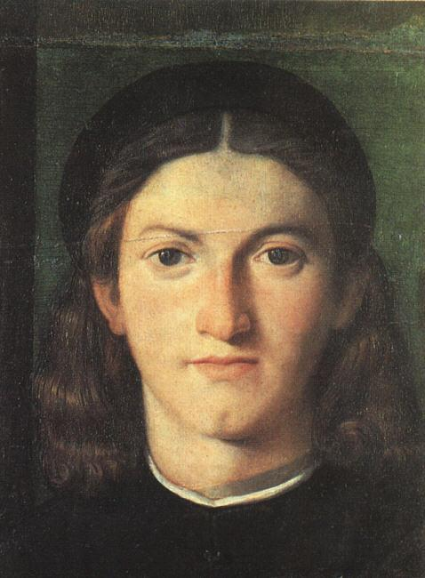 Lorenzo Lotto Head of a Young Man ff oil painting image