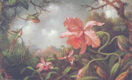 Martin Johnson Heade Hummingbirds and Two Varieties of Orchids Germany oil painting art