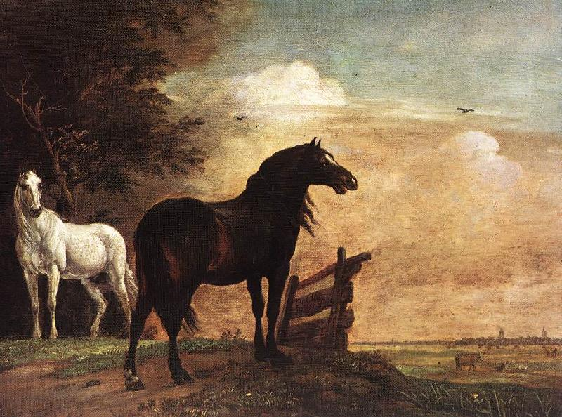 POTTER, Paulus Horses in a Field zg oil painting image