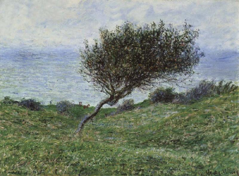 Claude Monet On the Coast at Trouville oil painting picture