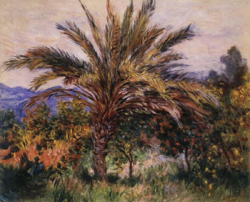 Claude Monet A Palm Tree at Bordighera oil painting picture