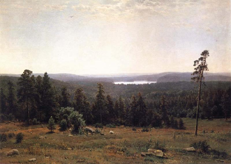 Ivan Shishkin Landscape of the Forest oil painting picture