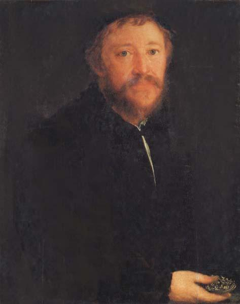 AMBERGER, Christoph Portrait of Cornelius Gros oil painting image