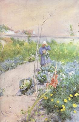 Carl Larsson In the Kitchen Garden (nn2 oil painting image